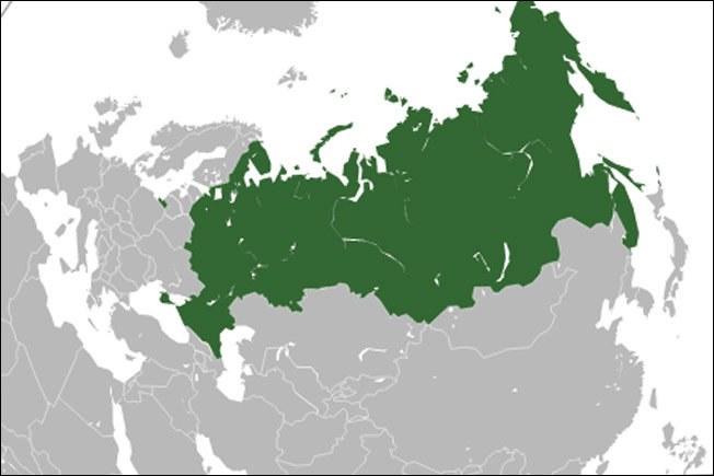 Российские виртуальные номера недорого